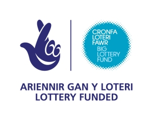 lottery bi-logo-blue-small-jpg