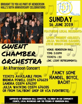 Chamber Orchestra poster